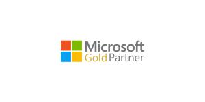 Small Microsoft Partner